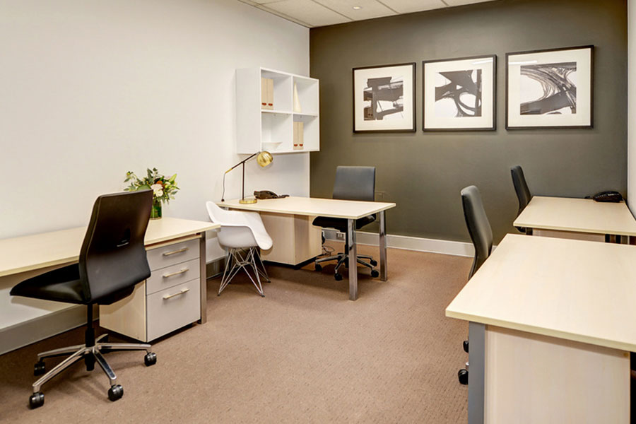 5 - 6 Person Workspace